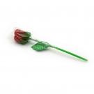 Red Rose Gummy